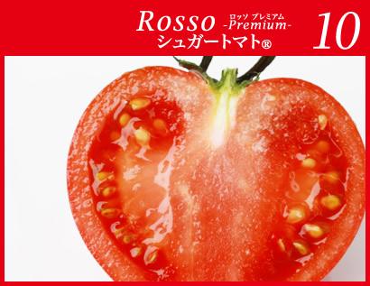 糖度10度 高糖度フルーツトマト ロッソプレミアム
