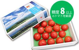 ぴゅあトマト販売開始いたしました