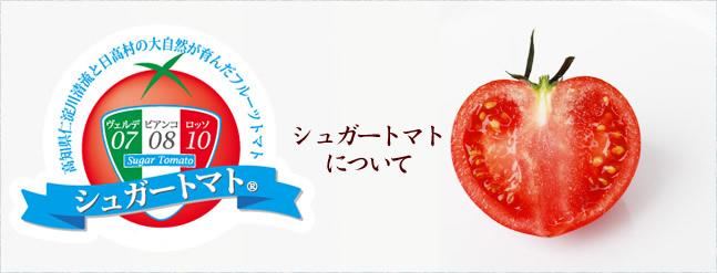 シュガートマトについて